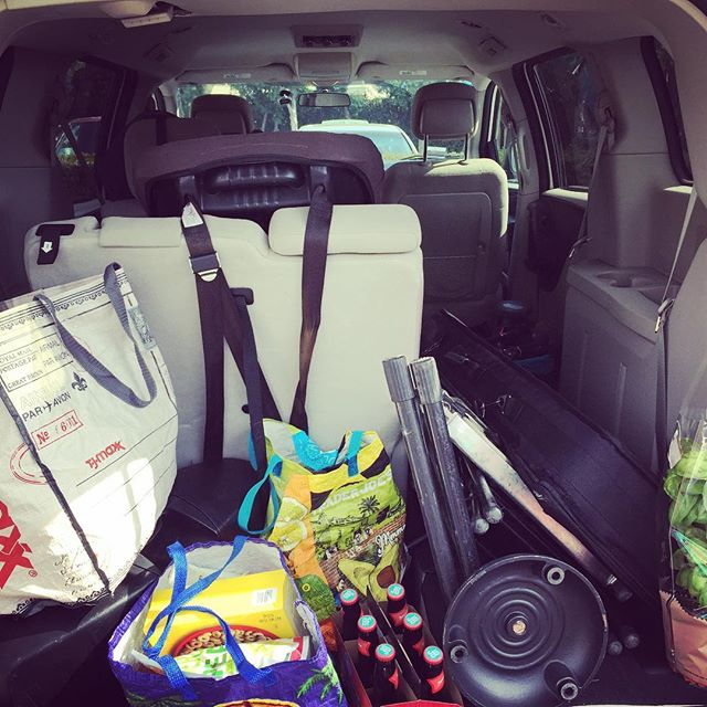 Giving up the rock touring van for a minivan. I can still fit all my equipment, two car seats a passenger, groceries and a plant... #mommymusician #raisinggirls #notascoolasiusedtobebutstillcoolenough